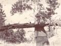 Evelyn Cameron Heritage, Inc. Vintage Photograph